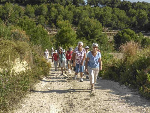Healthy Walking Group report, January 2016