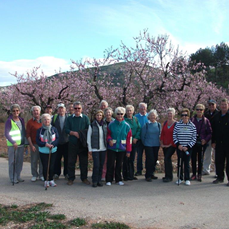 Healthy Walking Group report, February 2016