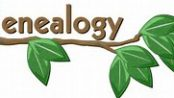 genealogy-picture