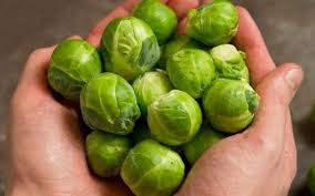 December Recipe - Sprouts!