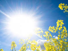 Summer Sun - Poem by Robert Louis Stevenson